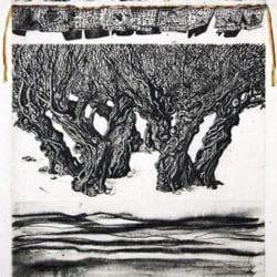 1624-Elbroch-Victoria-8-19
