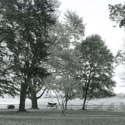 1844-Wainwright-Paul-2-17