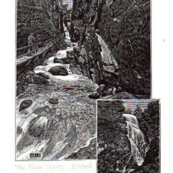 1909-Hale-RP-7-19