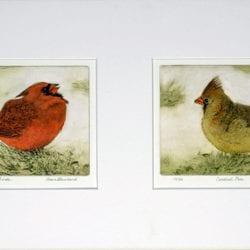 Blanchard-Dawn-AngryBirds