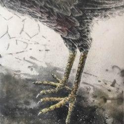 Eldridge-J.Ann-dinosaur
