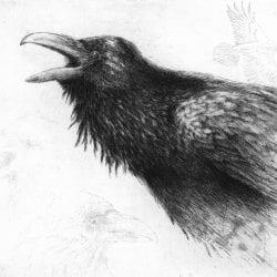 Eldridge-J.Ann-raven