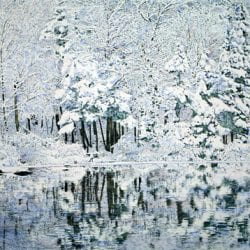 Peck-Bruce-winter-reflections
