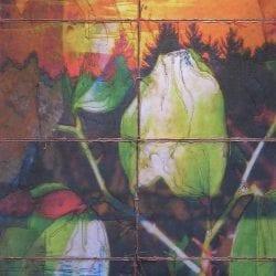 Redmond-Wen-Birds-Eye-View-4x6-300-copy