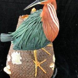 Roth-Richard-Green-Heron